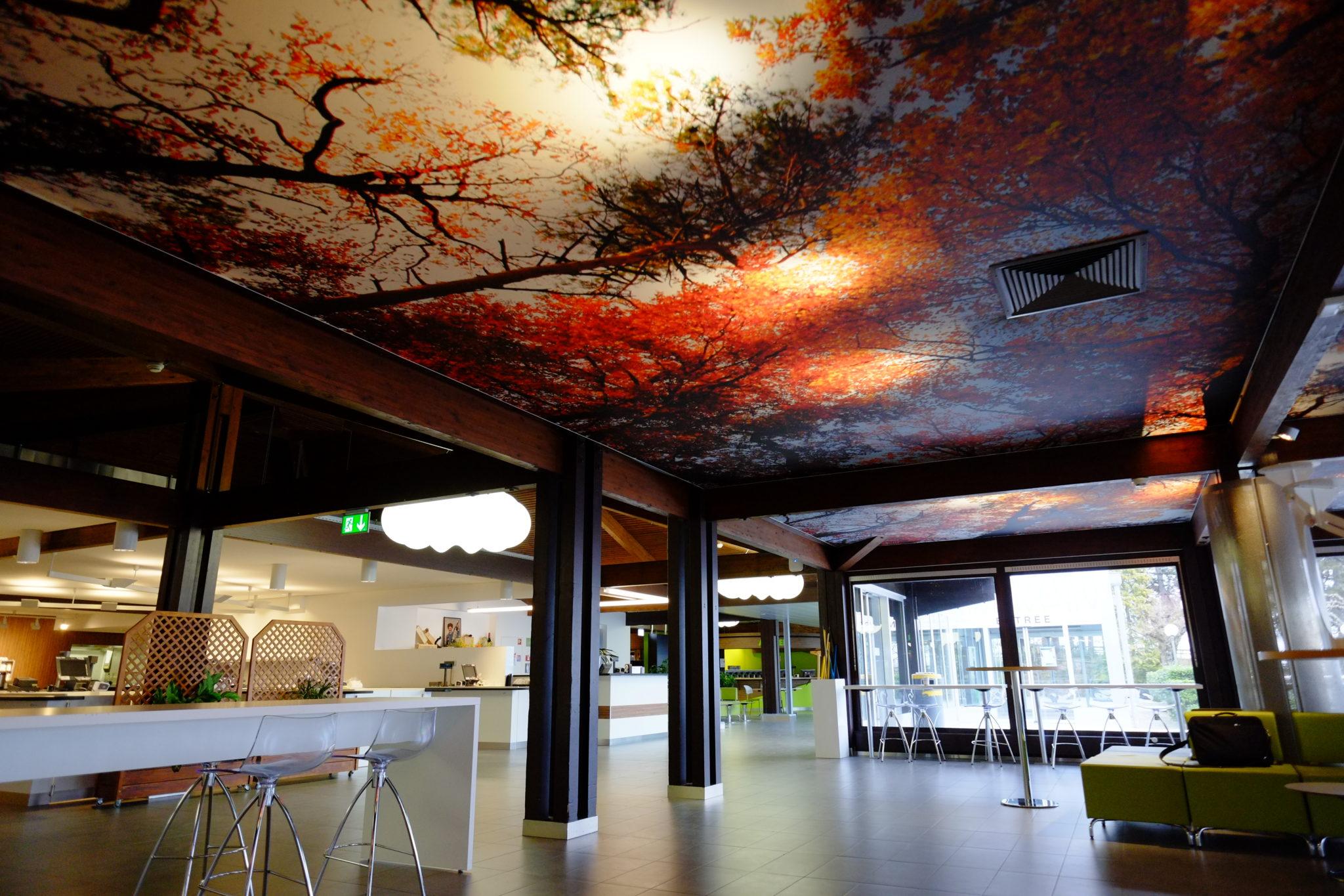 plafond tendu imprimé restaurant